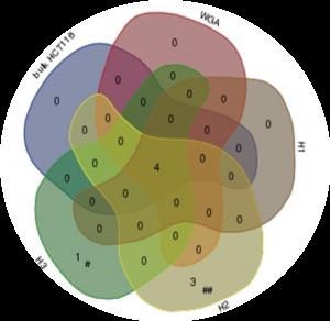 Molecular analyses